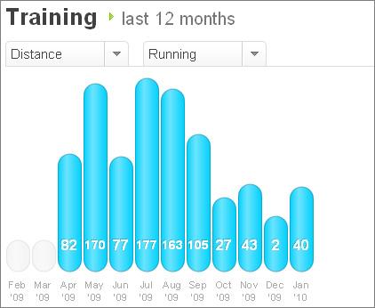 12 kuukauden treeniyhteenveto Dailymile.comista