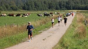 Juoksijoita Raastosuoralla (kuva VV #10:ltä)